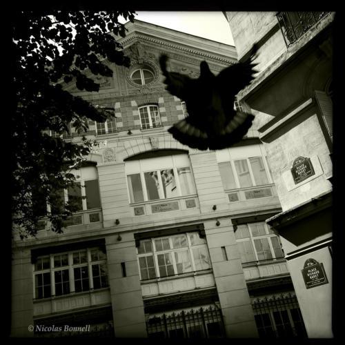 Rue des Batignolles - ©Nicolas Bonnell