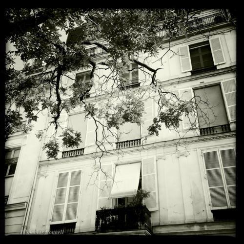 Quais de Seine - ©Nicolas Bonnell