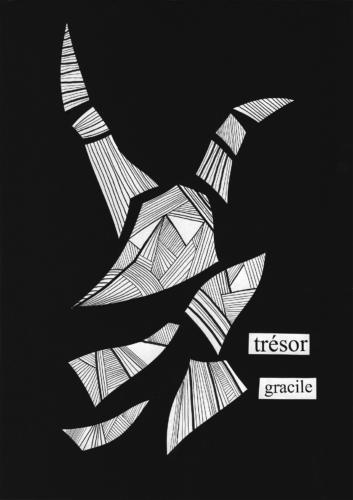 Trésor Gracile ©Nicolas Bonnell